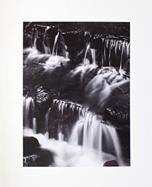 Images: Adams, Ansel