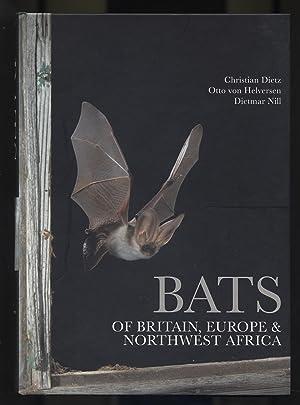 Bats of Britain, Europe & Northwest Africa: Dietz, Christian et
