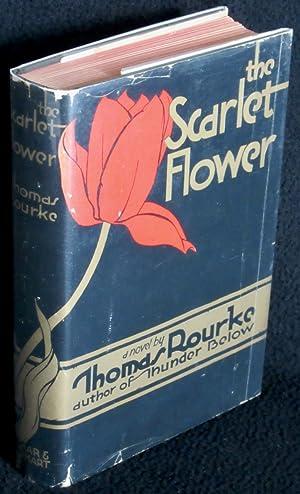 The Scarlet Flower: Rourke, Thomas