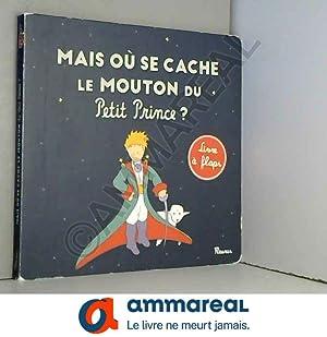 Image du vendeur pour Mais où se cache le mouton du Petit Prince ? mis en vente par Ammareal