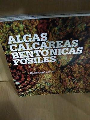 Seller image for Algas Calcáreas Bentónicas Fósiles (Cuadernos Lagoven) (Spanish Edition) for sale by LIBRORIA2