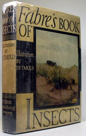 Fabre's Book of Insects. Retold from Alexander: DETMOLD, E.J.