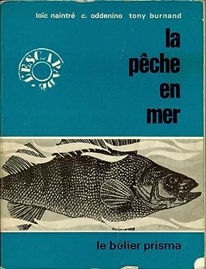 La pêche en mer: NAINTRE Loïc -