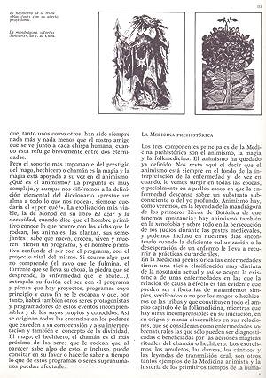 MEDICINA ANIMISMO Y MAGIA: Santiago Loren