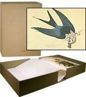 THE JOHN JAMES AUDUBON PORTFOLIO : A Selsction of the Original Drawings and Watercolors Used in M...