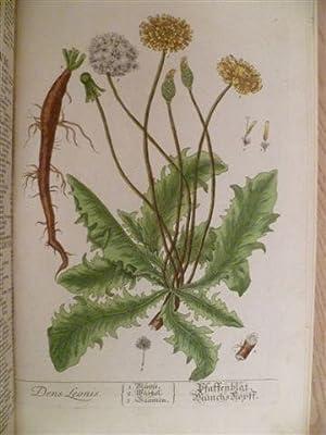 Herbarium Selectum. Sammlung der Gewächse, die zum: Blackwell, Elizabeth.