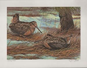 1986 Conservation Stamp Print No. 8: American Woodcock series print No. 2: Foote, Jim 1925-2004.