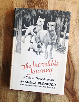 THE INCREDIBLE JOURNEY : A Tale of Three Animals
