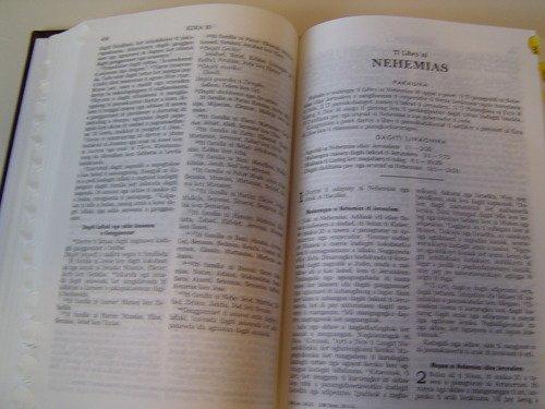 9780001473645: Naimbaga Damag Biblia, Ilokano - (Philippines) - Popular Version