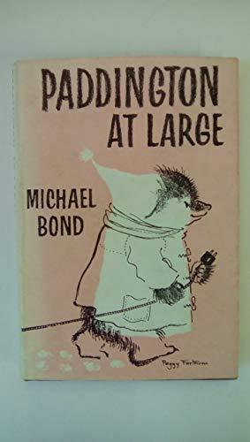 9780001821057: Paddington at Large