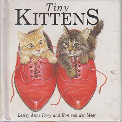 9780001913790: Tiny Kittens: Pop-up Book