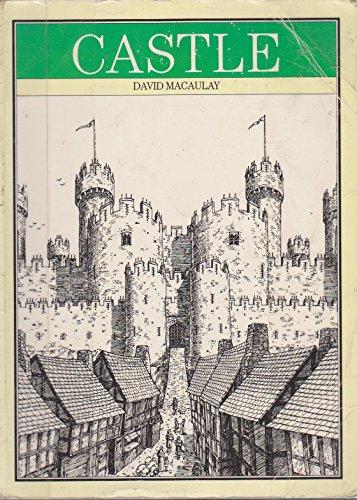 9780001921580: Castle