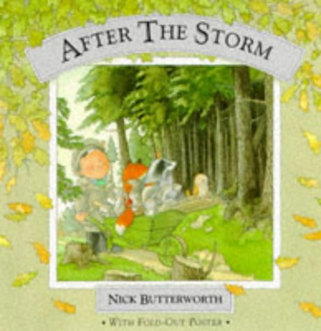 9780001939097: After the Storm