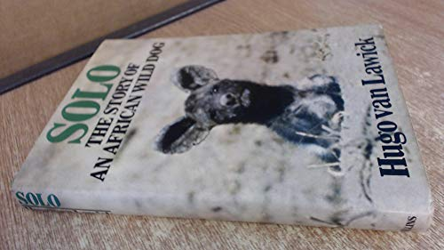 9780002167543: Solo: Story of an African Wild Dog