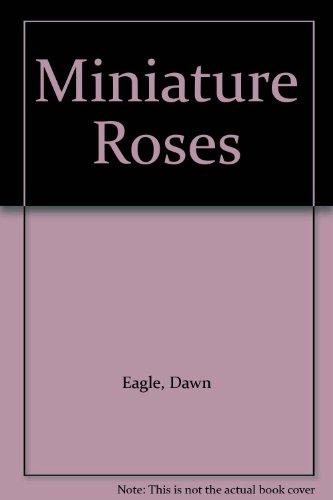 Miniature Roses: Dawn Eagle