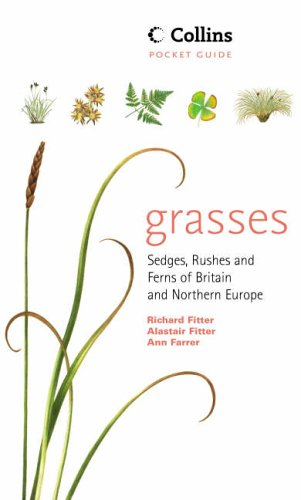 9780002191364: Grasses, Sedges, Rushes and Ferns of Britain and Northern Europe - Collins Pocket Guide.