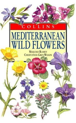 Mediterranean Wild Flowers (Collins Field Guide): Marjorie Blamey; Christopher