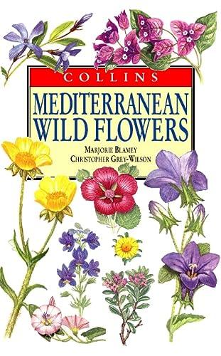 Mediterranean Wild Flowers (Collins Field Guide): Marjorie Blamey, Christopher