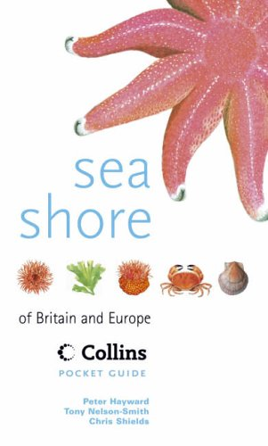 9780002199551: Sea Shore of Britain and Europe (Collins Pocket Guide)