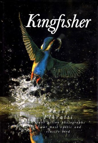 9780002199575: Kingfisher - Unique action photographs of our most exotic and elusive bird