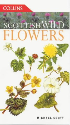 9780002199827: Scottish Wild Flowers (Collins Guides)
