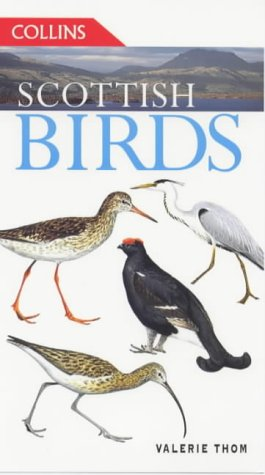 9780002199834: Scottish Birds (Collins Guides)