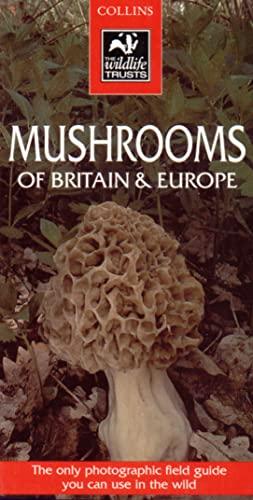 9780002200127: Mushrooms of Britain & Europe (Collins Wild Guide)