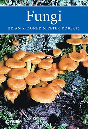 Fungi: Brian Spooner &