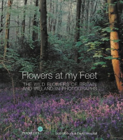 9780002202138: Flowers at my Feet: The wild flowers of Britain and Ireland in photographs