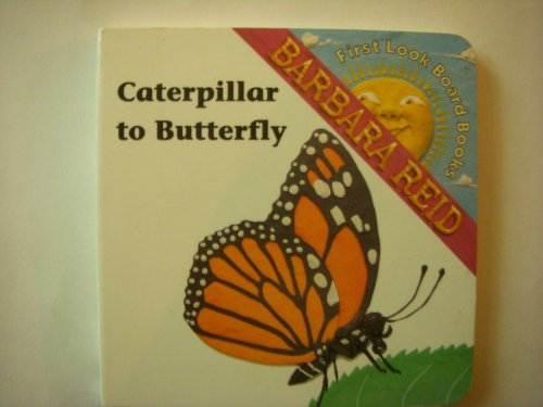 9780002240079: Caterpillar to Butterfly