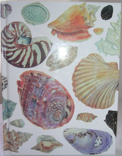 9780002251716: Shells Blank Journal