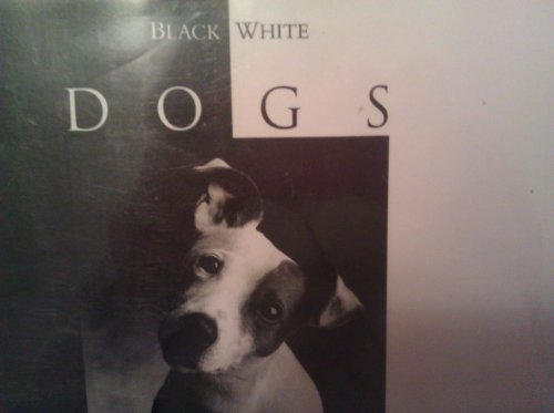 9780002550185: Black & White Dogs
