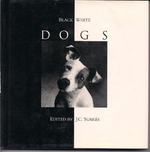 9780002550819: Black & White Dogs