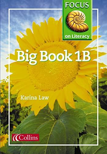 9780003025231: Focus on Literacy: Big Book 1B