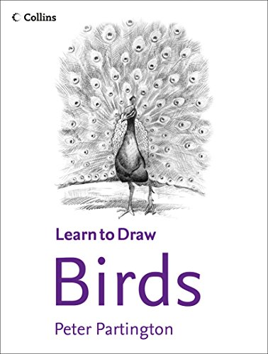 9780004133515: Collins Learn to Draw - Birds