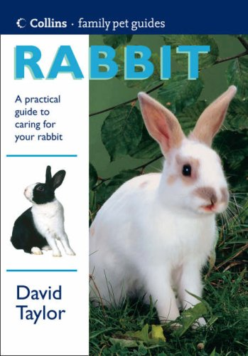 9780004133775: Rabbit (Collins Family Pet Guide)