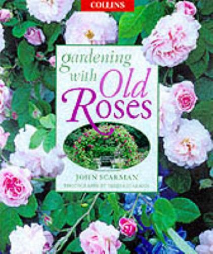 9780004140827: Gardening With Old Roses