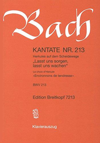 9780004173641: Kantate 213 Lasst Uns Sorgen, Lasst Uns Wachen - Buch