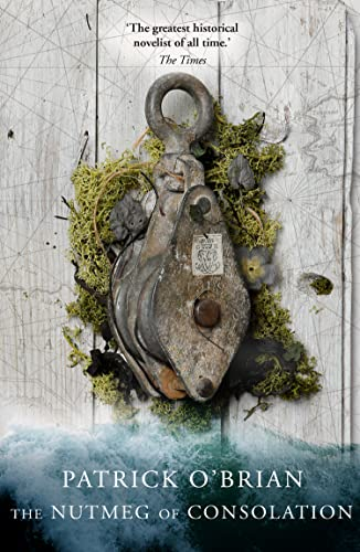 9780006499299: The Nutmeg of Consolation