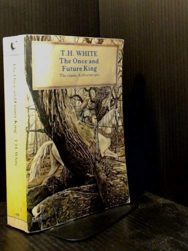9780006540106: Once and Future King (Flamingo)