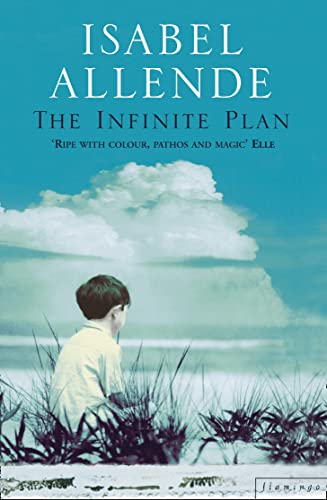 9780006546849: The Infinite Plan