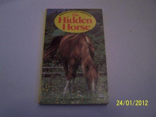 9780006917311: Hidden Horse
