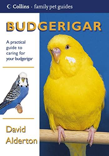 9780007122844: Budgerigar (Collins Family Pet Guide)