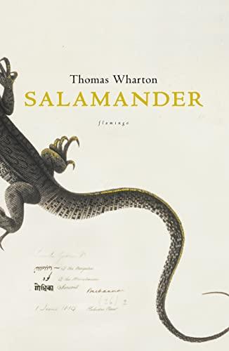 9780007128655: Salamander