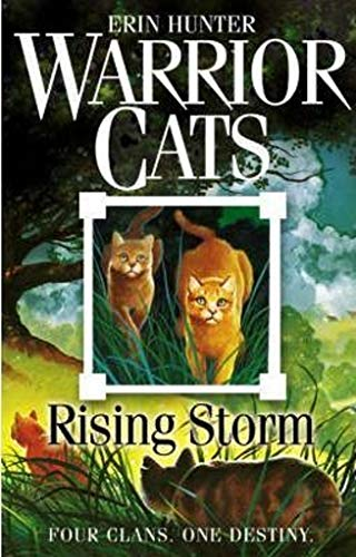9780007140053: Rising Storm (Warrior Cats, Book 4)