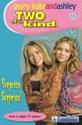 9780007144624: Surprise Surprise (Two Of A Kind, Book 19) (Two of a Kind Diaries)