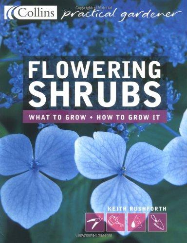 9780007146536: Flowering Shrubs (Collins Practical Gardener)