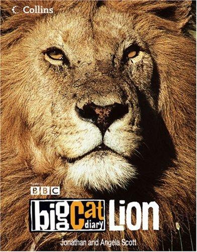 9780007146666: Big Cat Diary: Lion