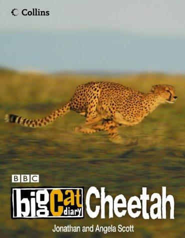 9780007149209: Big Cat Diary: Cheetah
