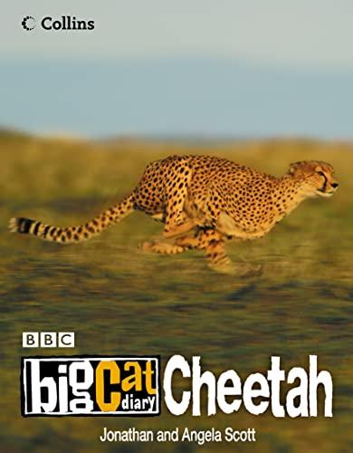 9780007149209: Cheetah (Big Cat Diary)